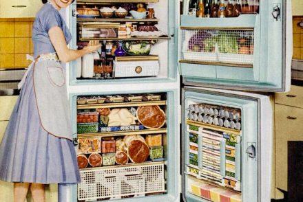 Bild Kühlschrank Basics