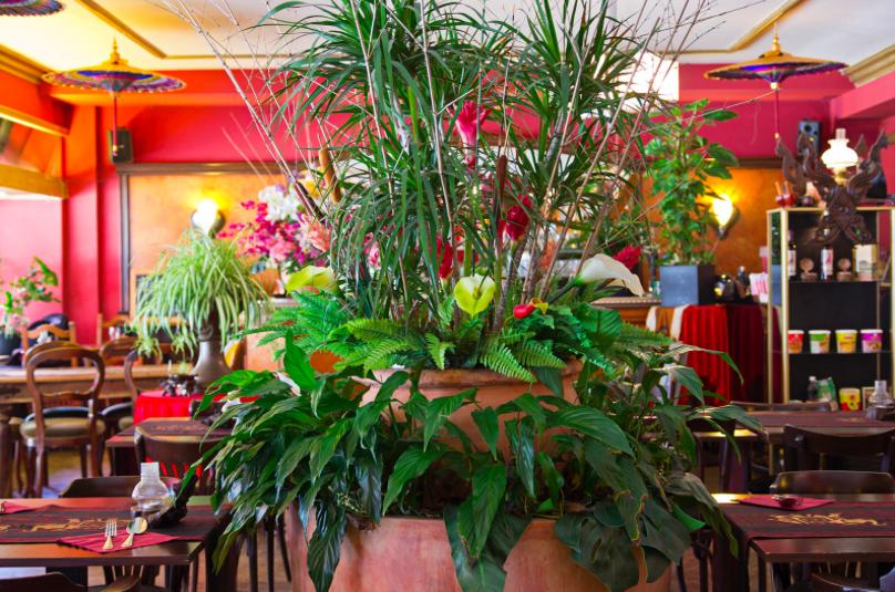 Bild Restaurant Five Spice Zürich